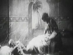 imto the harem circa 1920