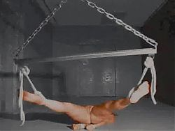 BDSM Inverted Suspension
